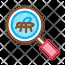 Bug Mosquito Search Icon