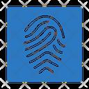 Identity Verification Fingerprint Icon