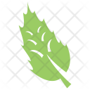 Fir Leaf Icon