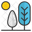 Sun Fir Tree Icon
