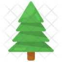 Fir Tree Tropical Tree Cedar Icon