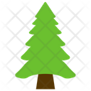 Tree Fir Pine Icon