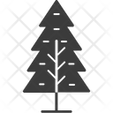 Fir Trees Larch Trees Evergreen Trees Icon