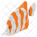 Fish Sea Creature Sea Animal Icon