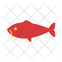 Fish Catfish Seafood Icon