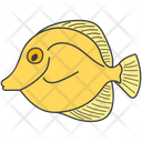 Sea Creature Fish Aquatic Animal Icon