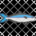 Fish Sea Creature Marine Specie Icon