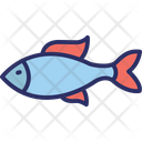 Fish Sea Animal Sea Icon