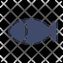 Fish Fishing Sea Icon