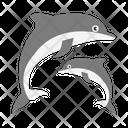 Fish Dolphin Sea Icon