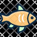 Fish Fishing Salmon Icon