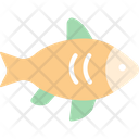 Fish Fishing Salmon Icon