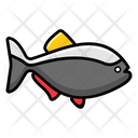 Fish Seafood Fish Meal Icon
