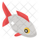 Fish Aquatic Creature Seafood Icon