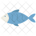 Domestic Animal Fish Icon