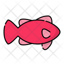 Fish Animal Ocean Icon