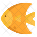 Fish Sea Mammal Icon