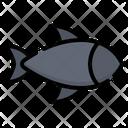 Fish Fishes Animal Icon