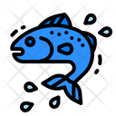 Fish Meat Fishes Supermarket Animal Icon