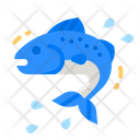Fish Meat Fishes Icon