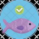Keto Diet Fish Seafood Icon