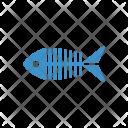 Fish Seefood Skeleton Icon