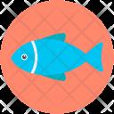 Fish Food Healthy Icon