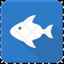 Ocean Fish Sea Icon