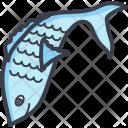 Fish Fishing Seafood Icon