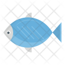Fish Food Seadfood Icon