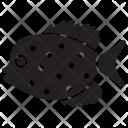 Mahi Mahi Pet Underwater Icon