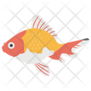 Fish Aquaculture Goldfish Icon