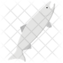 Fish Aquaculture Freshwater Fish Icon