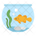 Fish Water Bowl Icon