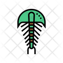 Horseshoe Crabs Color Icon
