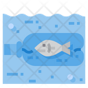 Fish Stuck In Bottle Icon