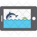Android Wallpaper Aquarium Wallpaper Fish Tank Wallpaper Icon