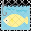 Fish Fishing Parks Icon