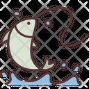 Fish Fishing Water Icon