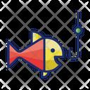 Fishing Fish Fish Cathing Icon