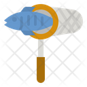 Fishing Net Net Fishing Icon