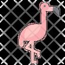 Flamingo Bird Animal Icon