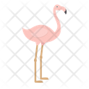 Flamingo Animal Bird Icon