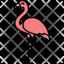 Flamingo Bird Pink Flamingo Icon