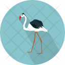 Flamingo Icon