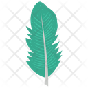Flight Feather Feather Plumage Icon