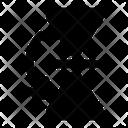 Flip Horizontal Icon