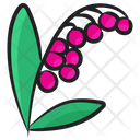 Blossom Flower Bloom Icon