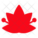 Floral Bloom Flower Icon