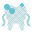 Dental Care Dentist Floss Icon